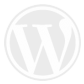 wordpress related post